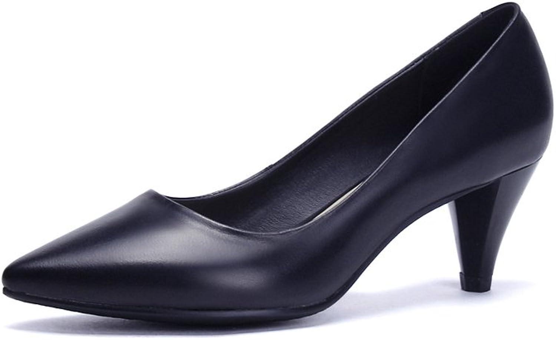 Lucksender Womens Closed Pointed Toe Mid Heel Comfort Work Pumps