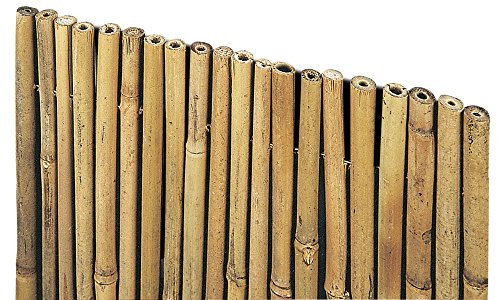 VERDELOOK Arella River in cannette di Bamboo Pieno, 1x3 m, coperture recinzioni