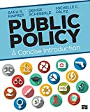Public Policy: A Concise Introduction