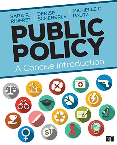 Public Policy: A Concise Introduction (NULL)