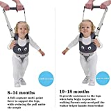 Zoom IMG-1 iulonee baby walking helper maniglia