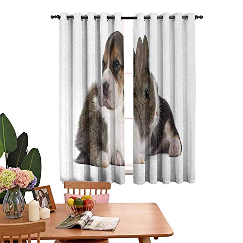 DRAGON VINES Blackout Curtains for Living Room- Bedroom Thermal Blackout Curtains Pets Rabbit and Puppy Animal Kingdom Friendship Best Companions Bunny Picture Prevent Light from Shining W55 x L62