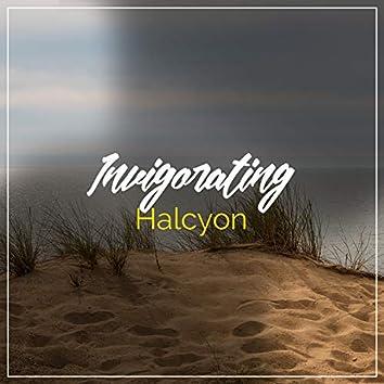 #Invigorating Halcyon