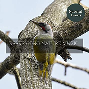 Refreshing Nature Music