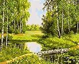 Peinture numérique non framed DIY peinture par chiffres Paysage Kit acrylique peinture acrylique sur toile Moderne Art Art Art par Numéros for salon ( Color : SZGD3884 , Size(cm) : 50x40cm no frame )