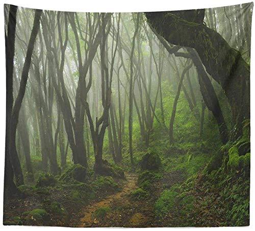 AOOEDM Tapiz de Interior Misty Rainforest Tapiz para Colgar en la Pared Naturaleza Paisaje Tapiz Sol a través de árboles Tapices para Dormitorio Sala de estar150x200cm