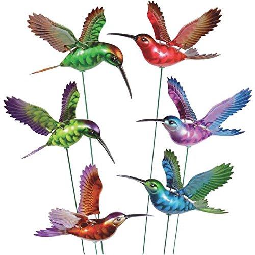 Exhart Ns Hmingbird STK 7' Ww