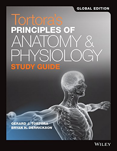 Tortoras Principles Of Anatomy And Physiology Study Guide