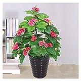 SHUTING2020 Bonsai Planta Artificial Kumquat/Camellia Planta de 27 Pulgadas Fake Potted Plantas, usadas para paisajes Interiores y Exteriores, árbol Falso Árbol bonsái Artificial