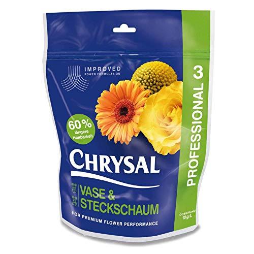 Chrysal Clair Professional 3 Vase & Mousse Florale - 2 KG
