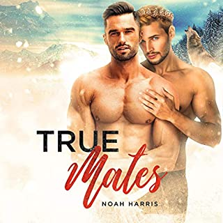 True Mates     A Gay Shifter MPREG              By:                                                                                                                                 Noah Harris                               Narrated by:                                                                                                                                 David Seager                      Length: 7 hrs and 7 mins     Not rated yet     Overall 0.0