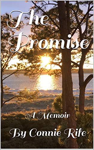 The Promise A Memoir by Connie Rife by Rife, By Connie