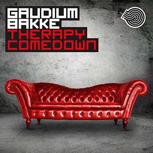 Gaudium & Bakke