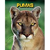 Pumas (Living in the Wild: Big Cats) (English Edition)