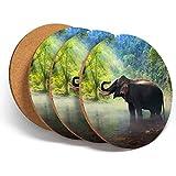 Juego de 4 posavasos con diseño de bosque de elefantes, selva de elefantes, posavasos de cocina, regalo #14494