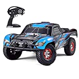 Tecesy Upgrade RC Cars, 1/12 Scale 4WD Off-Road Remote Control Car, High Speed 25Mph RC Truck/Monster Truck, Best RC Buggy Toy for Adults-Blue