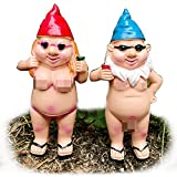 YiMOO Lustige nackte Gartenzwerge, kleine freche Statuen, freche Neuheit, Gartenarbeit, Geschenke für Familien Nachbarn (ein Paar)