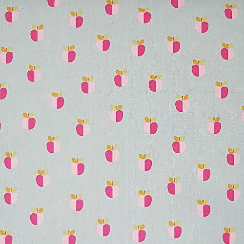 Sugarapple Stoff Meterware Baumwolle beschichtet   wasserdicht  wasserabweisend   weich  matt  Wachstuch  Qualität zum Nähen Apfel grau