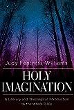 Holy Imagination