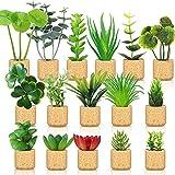 16 Pieces Mini Artificial Succulent Plants...