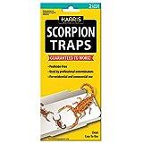 Scorpion Traps w/25...image