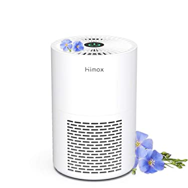 HIMOX Small Air Purifier for Bedroom, Super Quiet 20db Portable Desktop USB Power Air Purifier True HEPA Filter Home Air Cleaner for Allergies Smoke Pet Living Room Office, Eliminates Odor Pollen Dust