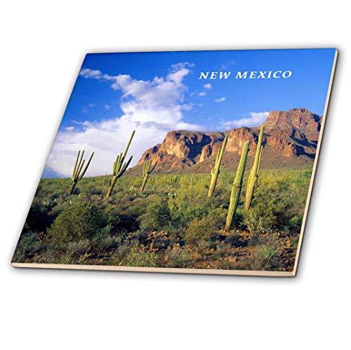 3dRose CT 62005_ 2Cactus Country in New Mexico-Ceramic Fliesen, 6
