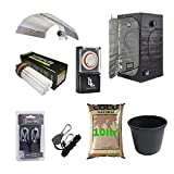 Complete Beginners Small Hydroponic Grow Tent Kit CFL Light Kit 60x60x140 Canna Coco