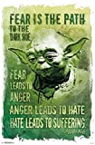 Close Up Star Wars Poster Yoda Path to The Dark Side