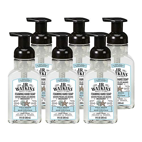 J.R. Watkins Foaming Hand Soap For Bathroom or Kitchen, Scented, USA Made And Cruelty Free, 9 Fl Oz, Ocean Breeze, 6 Pack