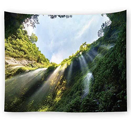 Paisaje natural paisaje gris bosque de niebla tapiz colgante de pared tapiz de pared revestimiento de pared tapiz psicodélico A10 180x200cm