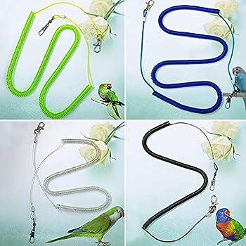 gohigher Laisse élastique pour oiseaux, sangles de dressage pour perroquets, calopsittes, étournements, perruches - Couleur aléatoire - 4 m
