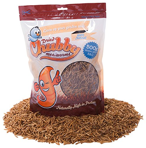 Gordita Mealworms Seed Mealworms, 500 g