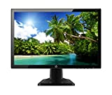 HP 20kd - Monitor de 19,5' (IPS, 1440 x 900, 8 ms, VGA, 60 Hz), color negro