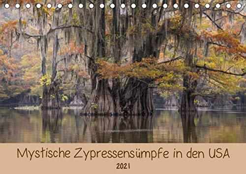 Mystische ZypressensümpfeAT-Version (Tischkalender 2021 DIN A5 quer)