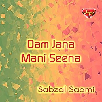 Dam Jana Mani Seena