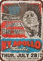 Shimaier 壁の装飾 ブリキ 看板メタルサイン James Brown en el Apollo en Harlem ウォールアート バー カフェ 20×30cm ヴィンテージ風 メタルプレート