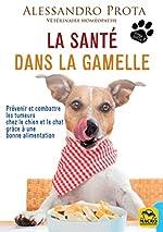 La santé dans la gamelle - Prévenir et combattre les tumeurs chez le chien et le chat grâce à une bonne alimentation de Prota Alessandro