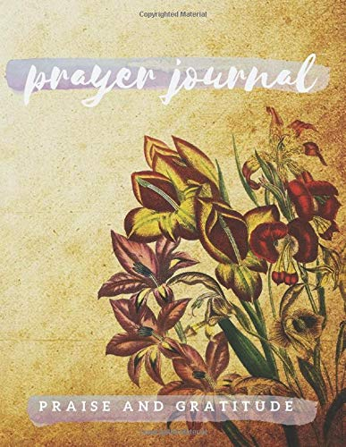 Prayer Journal Praise and Gratitude: Daily Prayer Requests 3 months. Best Diary for women for girls for men for teens for kids. Scripture. Thankful My ... God. Devotional Writing notebook. AM Project.