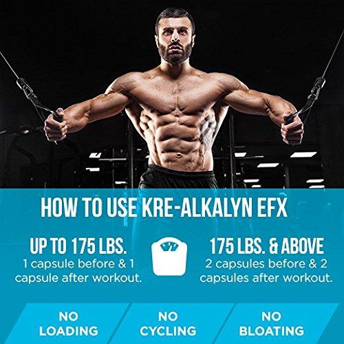 EFX Kre-Alkalyn 3000 – 260 Kapseln, 1er Pack (1 x 249 g) - 8