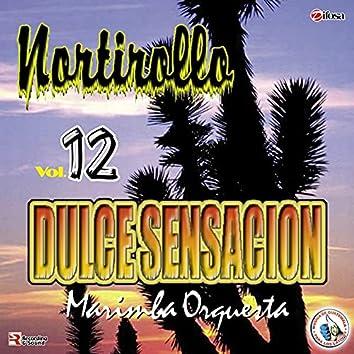 Nortirollo Vol. 12. Música de Guatemala para los Latinos
