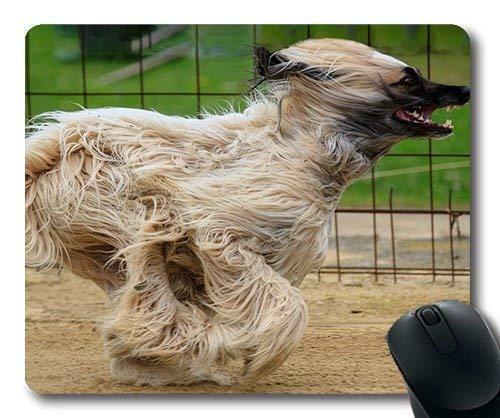 Alfombrilla De Ratón Personalizada, Alfombrilla De Ratón para Perros En Abundancia, Perro Galgo Afgane Mascota Animal Galgo Carreras, Alfombrilla De Ratón para Juegos