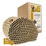Cuore di Animali Selvatici | 200 Tubi di Nidificazione con Ø 8 mm per api Selvatiche - Tu...