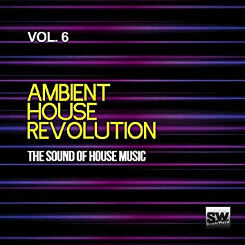 Ambient House Revolution, Vol. 6 (The Sound Of House Music)