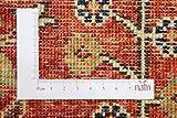 Nain Trading Arijana Klassik 233x173 Orientteppich Teppich Dunkelgrau/Braun Handgeknüpft Pakistan - 8