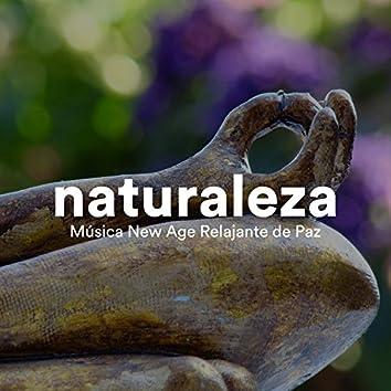 Naturaleza - Música New Age Relajante de Paz