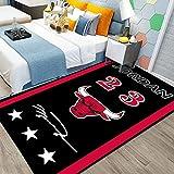 Bulls 23#Jordan Large Rug, Basketball Home Decoration Floor Carpet Yoga Mat Bedroom Rug for Children Kids Grils Boys Bedroom Jordan1-5080