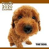 The Dog Wandkalender 2020 Pudel