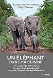 Un éléphant dans ma cuisine - Ce que mon troupeau d'éléphant m'a appris sur l'amour, le courage et la détermination - Format Kindle - 9782813220981 - 13,99 €