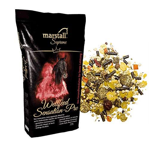 marstall Premium-Pferdefutter Wellfeed Sensation-Pro, 1er Pack (1 x 15 kilograms)